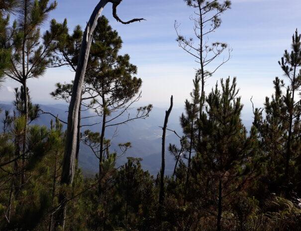 Pico Duarte 1 (15)